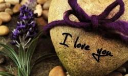 Я тебя люблю. Я тебя тоже - нет